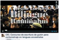 OEI. Concurso de escritura de guión para cortometraje en lenguas ancestrales