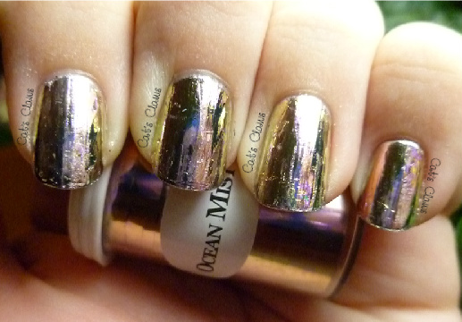 Cats Claws Dollar Nail Art Foil Mini Review