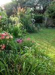 My garden in Suffolk