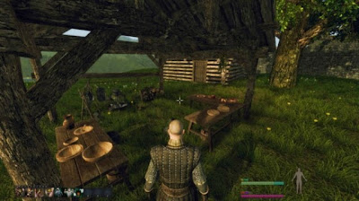 Life is Feudal PC Gameplay