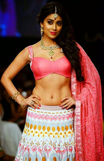 Shriya Saran Hot Navel Photo   nudesibhabhi.com