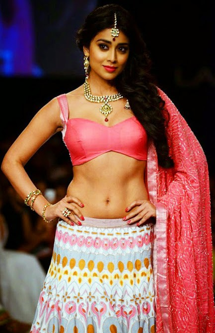 Shriya Saran Hot Navel Photo