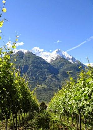 Grosjean winery Valle d'Aosta DOC