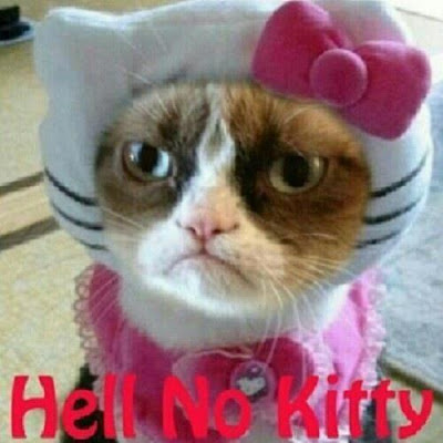 Grumpy cat dressed up as hello kitty equals hell no kitty.