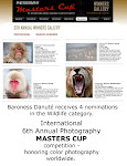 6th ANNUAL MASTERS CUP NOMINEE