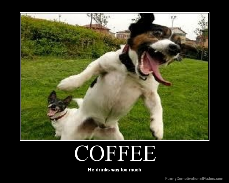 funny picture clip funny coffee posters
