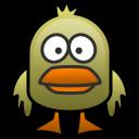 Duck blog