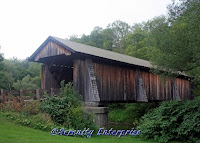 NY432 A View of the Livingston Manor Covered Bridge  by Serenity70