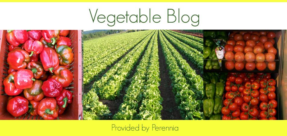 Nova Scotia Vegetable Blog