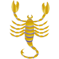 Scorpio Astrology Prediction about Love Life
