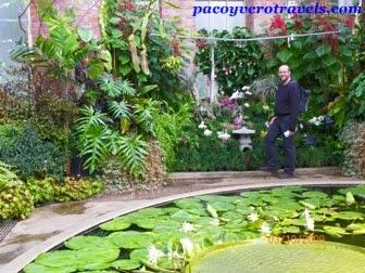 Que ver en Auckland en un día: Jardín de invierno