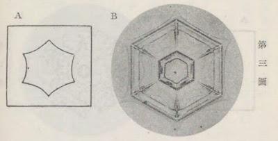『雪華図説』の研究 模写図と顕微鏡写真と比較 第三図
