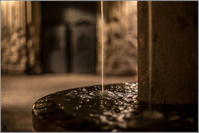 Las crónicas de Neri: Silencios al amparo del agua