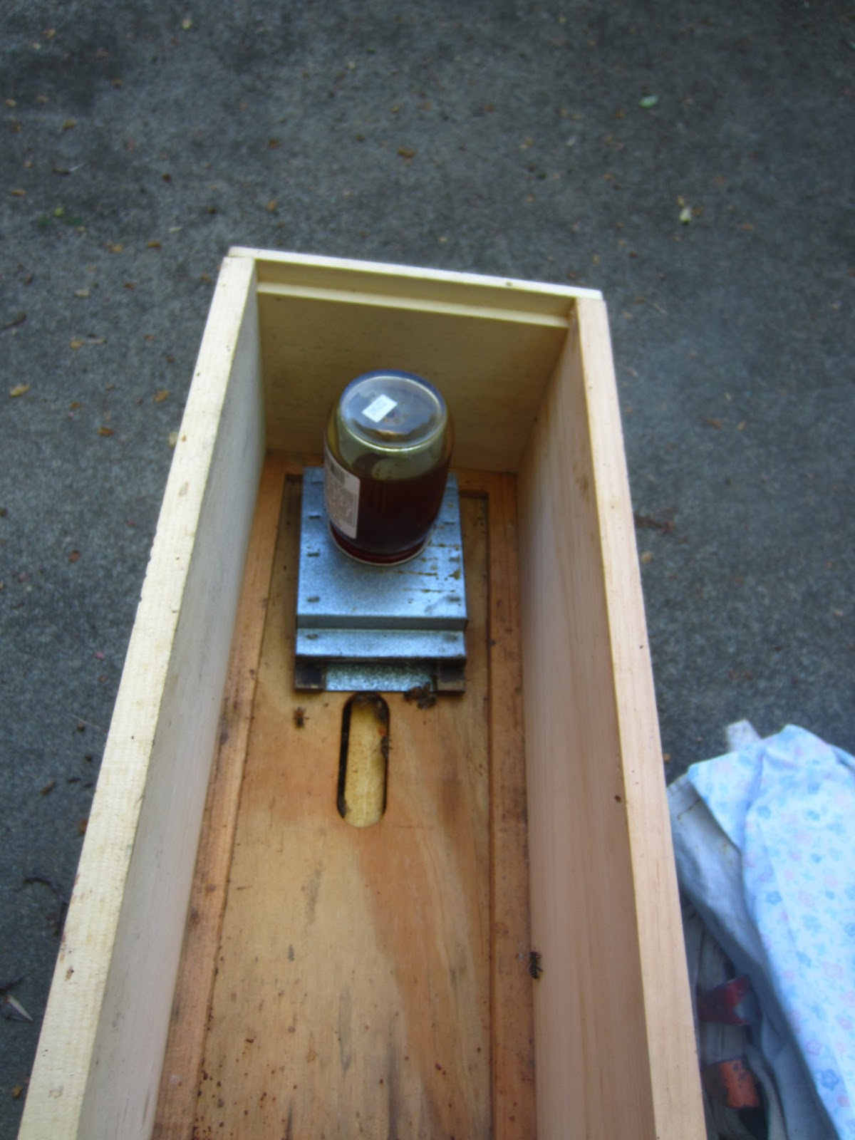 hive bees feeders feeder rapid s using the bee sunday aprilbee october linda