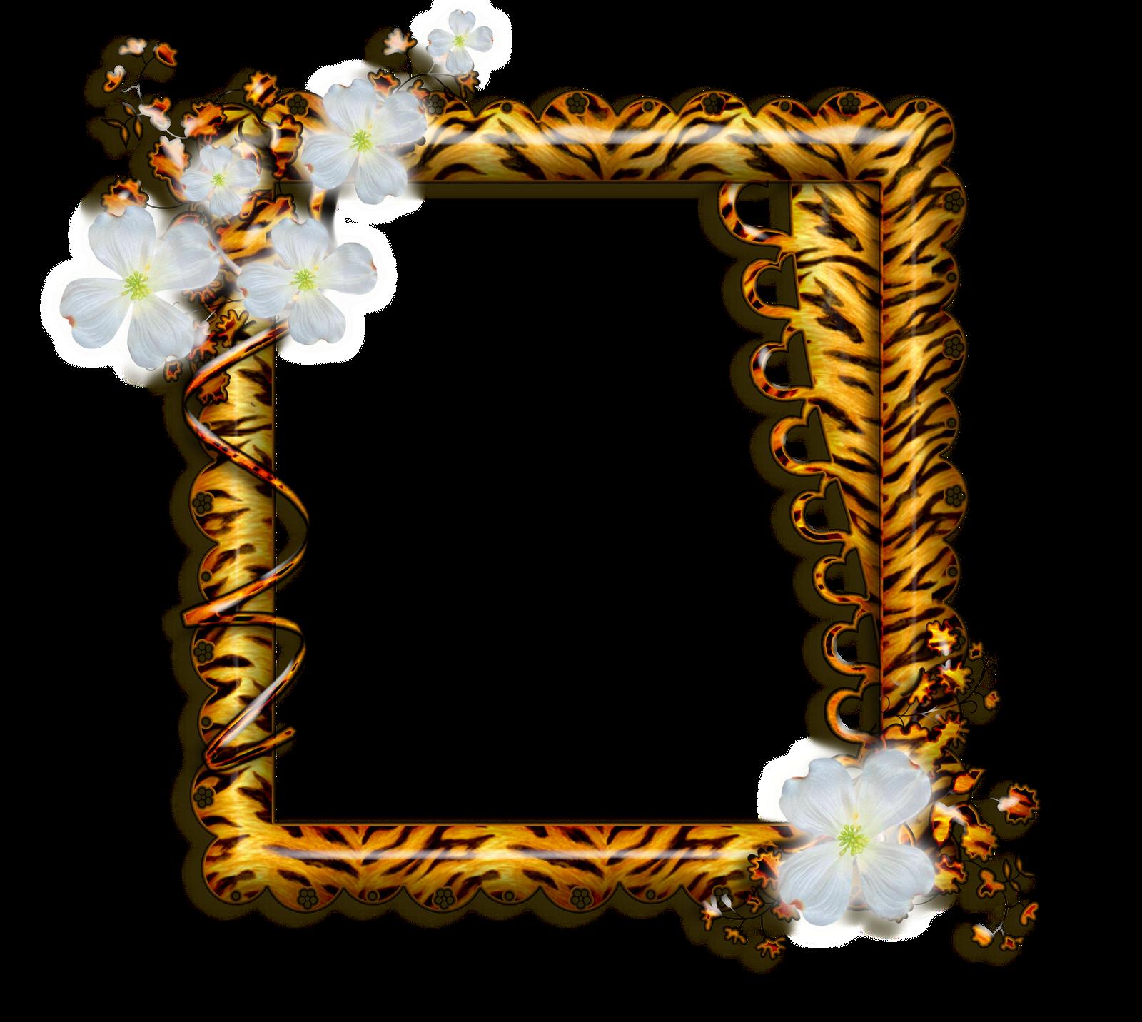 Marcos gratis para fotos marcos florales para fotos - Marcos fotos pared ...