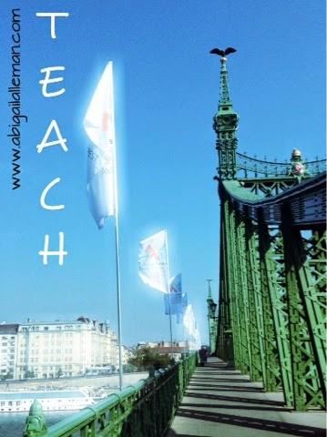 http://www.abigailalleman.com/2014/10/snapshots-soul-of-nation-teach.html