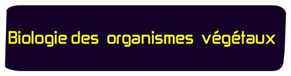 Biologie des organismes vegetaux svtu s2