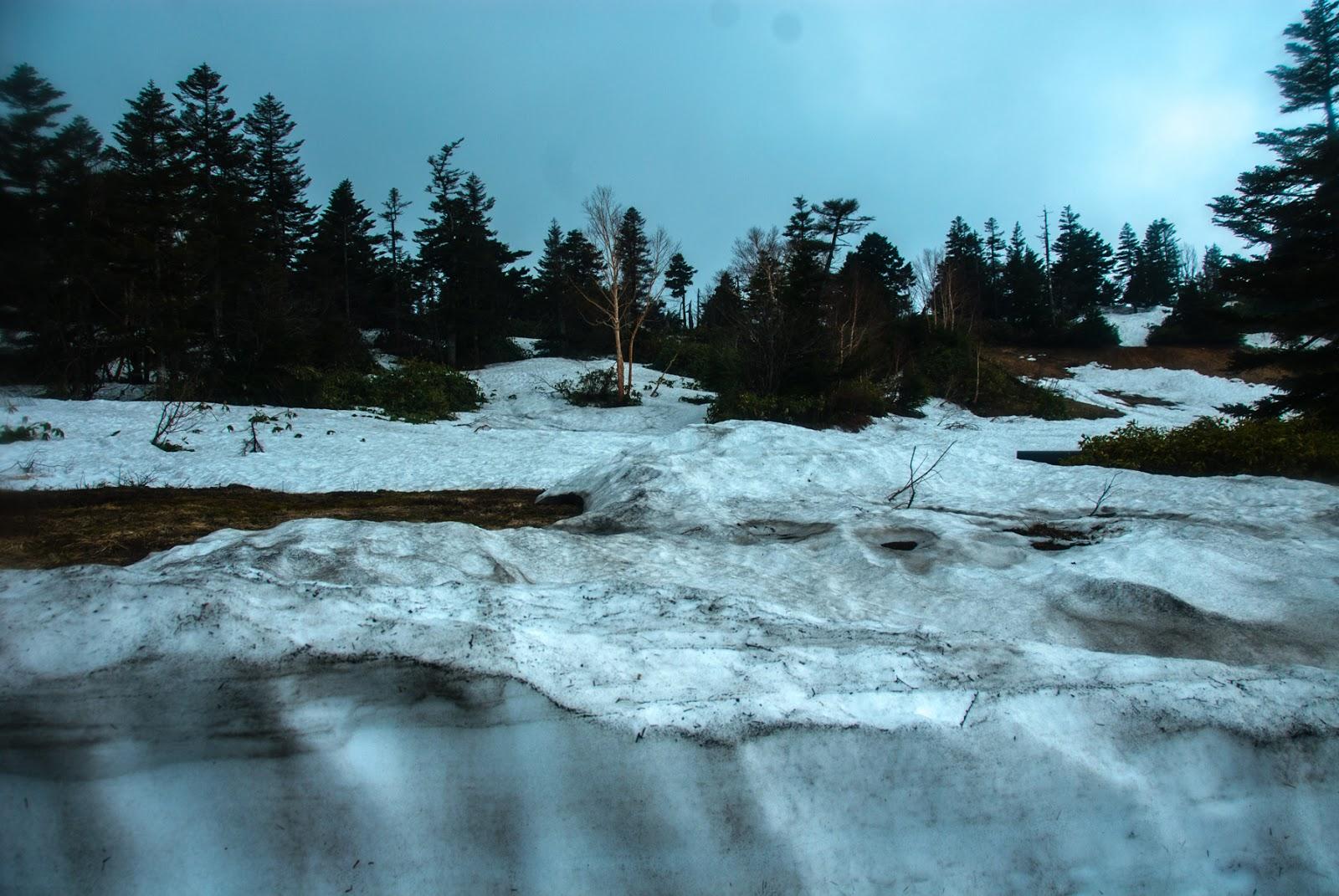 深い雪に覆われた山