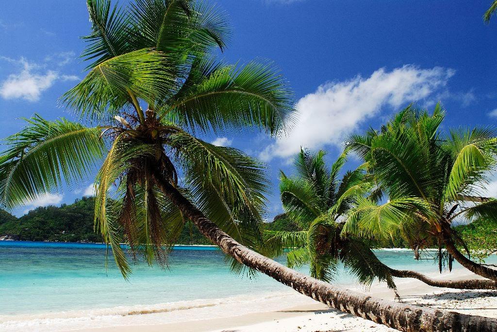 Baie Lazare Beach_Raymond Sahuquet