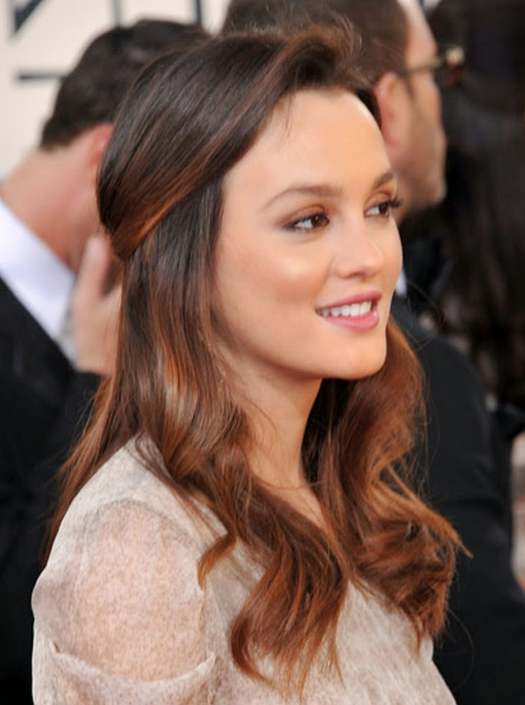 formal hairstyles for long brown hair}