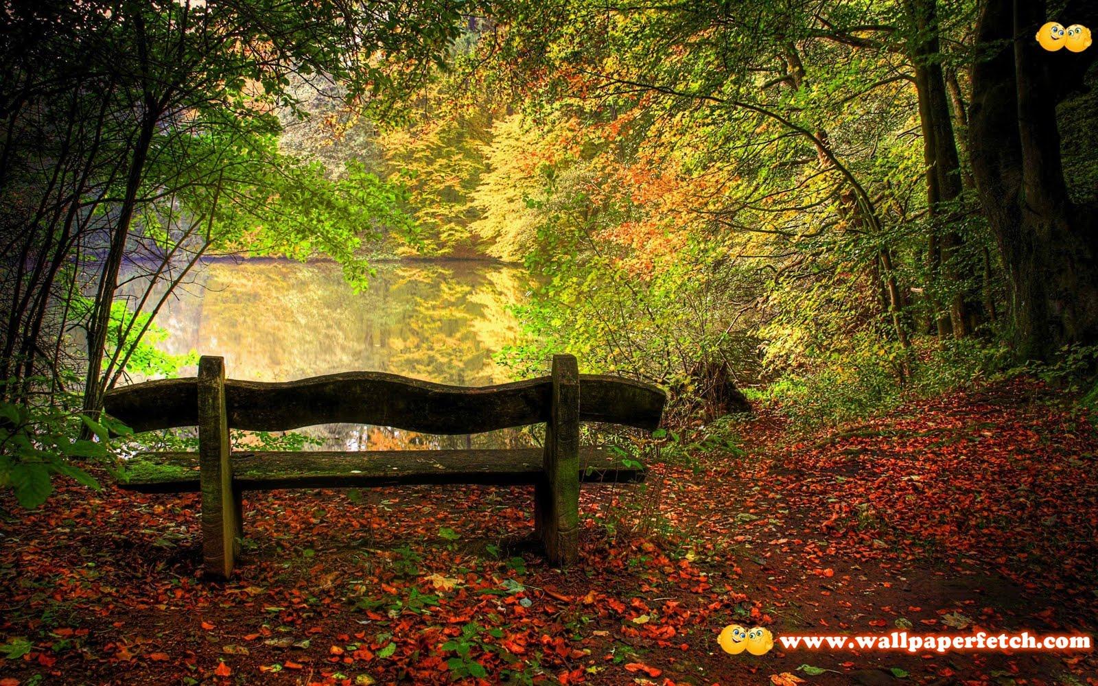 http://1.bp.blogspot.com/-iy-2lZxPrP0/Tr21D0s-N0I/AAAAAAAAKa0/XqBhqo8aFZo/s1600/SuperPack_Beautiful_Nature_HD_Wallpapers_Part__80.65.jpg