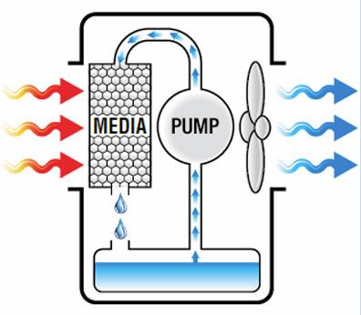 Raffrescatori d 39 aria come funzionano vantaggi opinioni for Rinfrescatore d aria