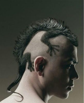 Lizard Iguana Hair Cut