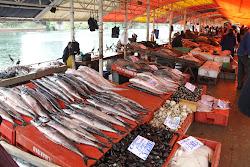 marché au poisson, Valdivia