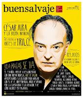 Buensalvaje, revista de literatura