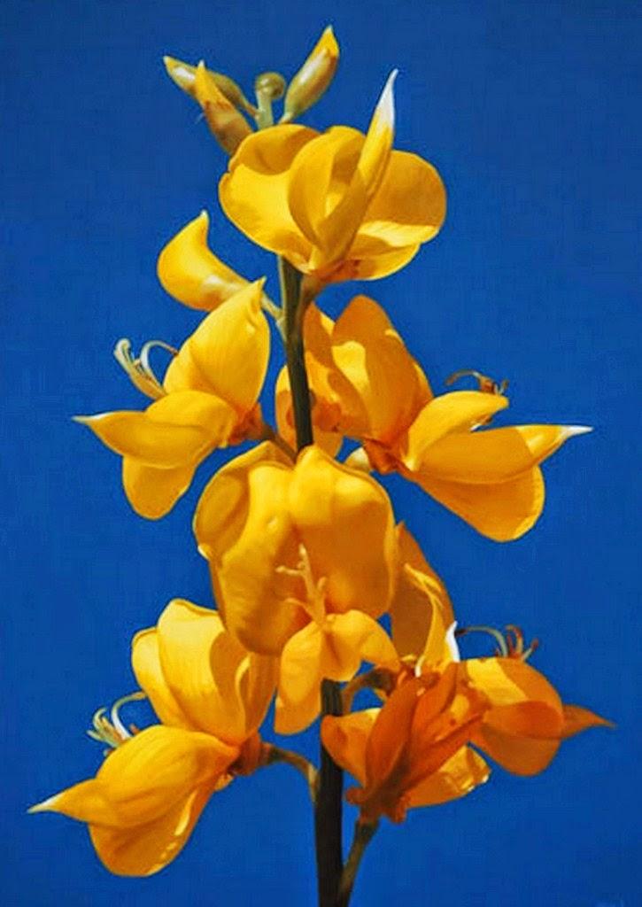 4 fotos 1 Palabra 6 letras: pinturas Dibujo de flores colores  - Fotos De Pinturas De Flores