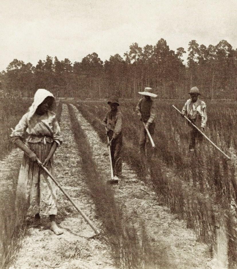 Slavery in Antebellum Georgia