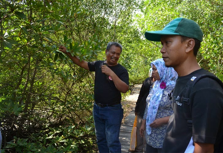 Praktek Pengenalan Jenis Mangrove