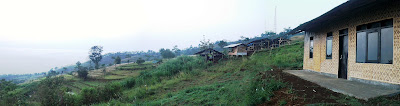 harga sapi qurban kambing kurban  2013 15 houses