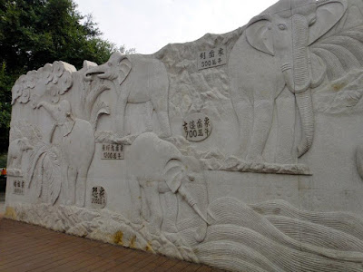 Evolution of elephants in Elephant Hill Scenic Area Guilin
