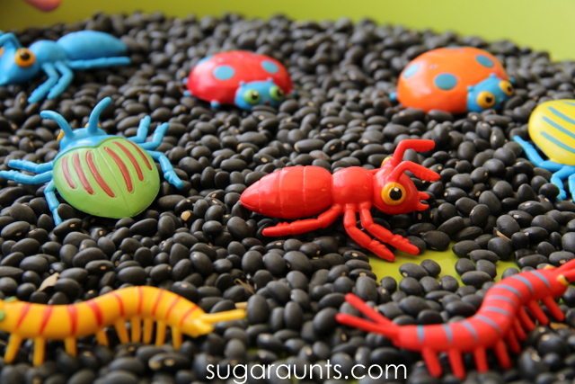 Explore ants, spiders, and beatles with a sensory activity