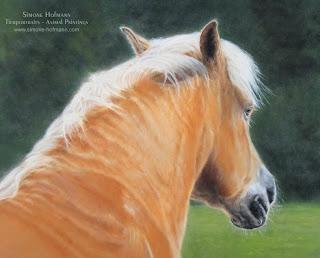 Tierportrait - Pferdeportrait, Pferd, Haflinger von Tiermalerin Simone Hofmann malen lassen.