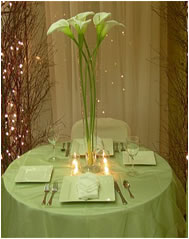 Weddings, Decoration, Flowers and Centerpieces