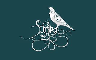 bird abstract art (5)