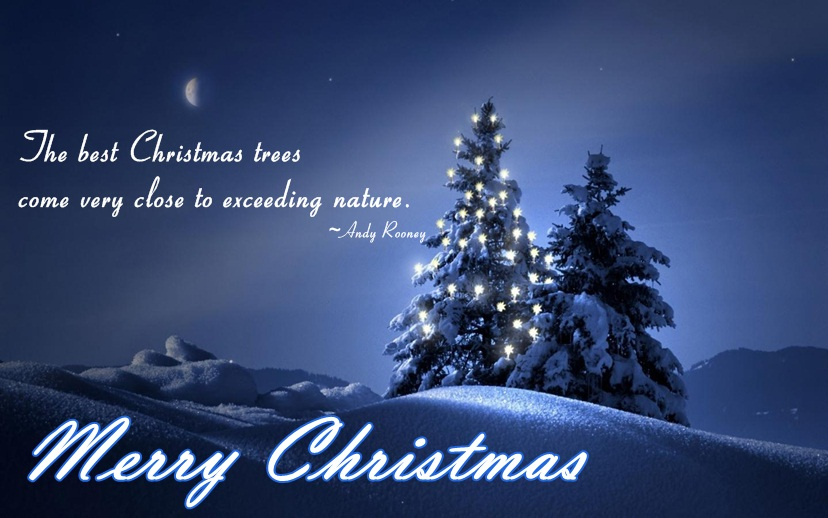 Beautiful Merry Christmas Quotes Images & Greeting Cards 2015 ...