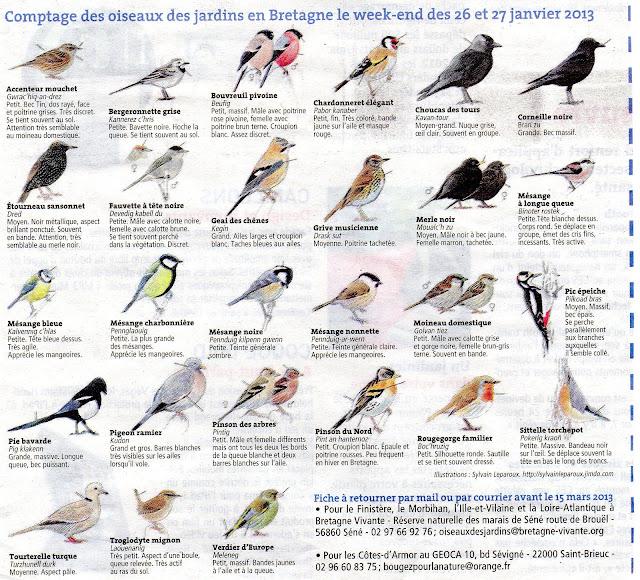 Les jardins familiaux de feunteun don les oiseaux de nos for Les oiseaux des jardins