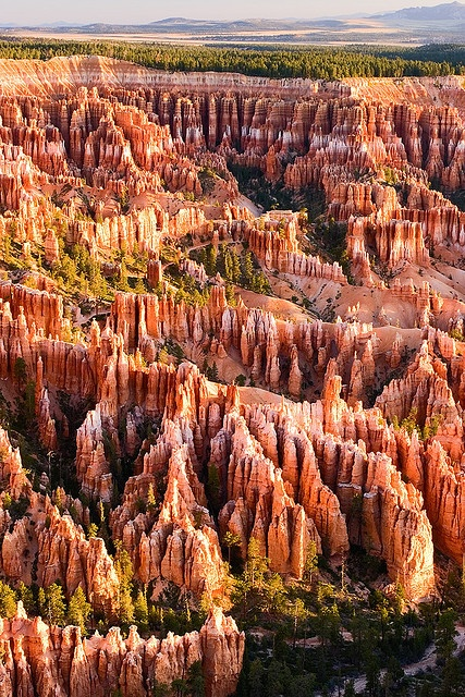 Bryce Canyon National Park,USA