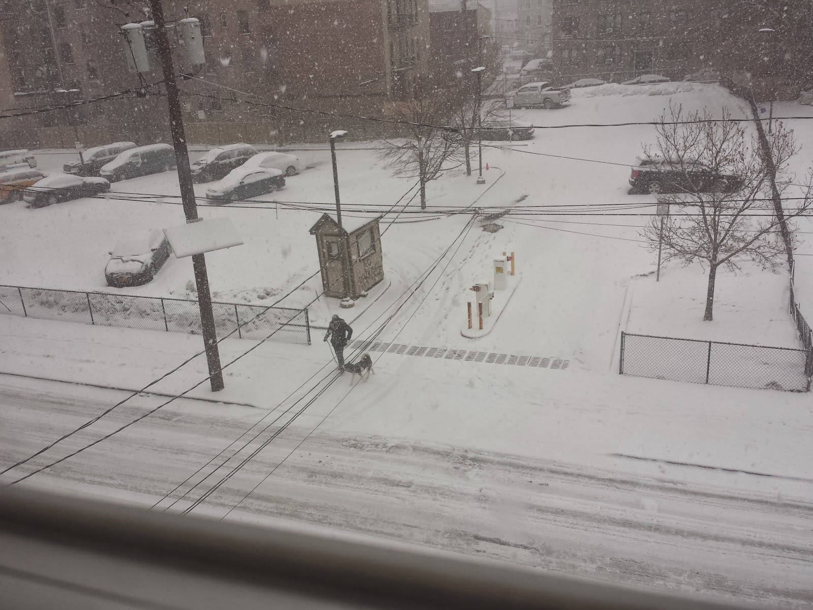 Snowing in Jersey City
