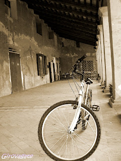 bicicletta Mesola