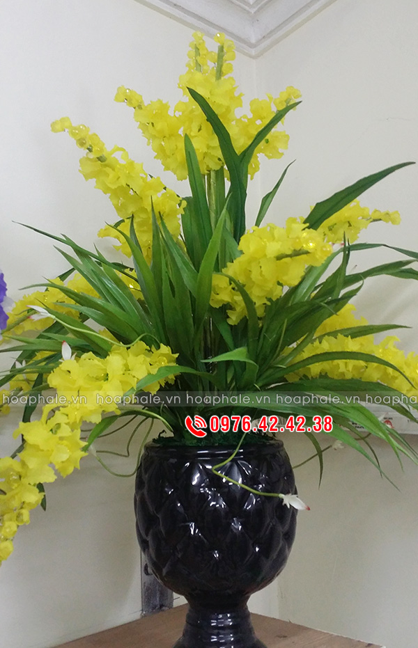 Hoa lan vàng - hoa pha lê