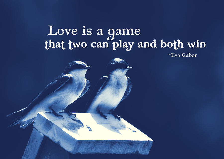 Quotes About Love Birds : Funny Pictures Gallery: Birds quotes, larry bird quotes, bird quote