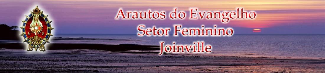 Arautos do Evangelho - Setor Feminino -  Joinville
