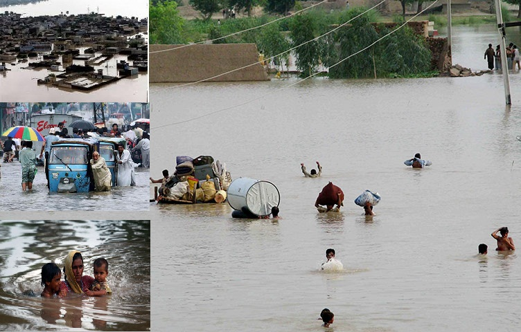 essays on floods in pakistan Free essays on essay on flood in pakistan 2010 get help with your writing 1 through 30.