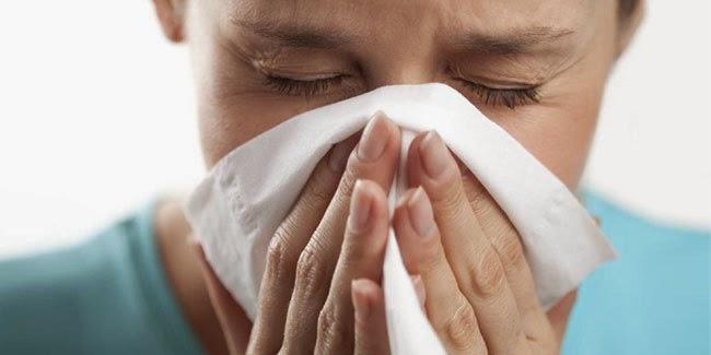 Kesehatan : Mengobatai Sinusitis dengan obat Alami