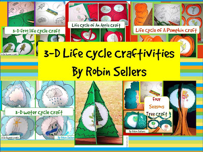 3-D life cycle craftivities