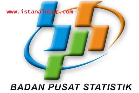 Lowongan Kerja Badan Pusat Statistik